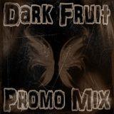 Dark Fruit - Promo Mix Vol. 1