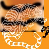 Sterrenplaten 16 November 2018 - Eastern Daze V