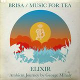 Brisa /Music for Tea / Elixir /Ambient Balearica Journey Mix by George Mihaly