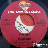 The Soul Alliance: Vinyl Alliance Vol.28 (Rare 12)