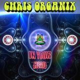 Chris Organix - In Your Head