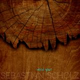 SEBASTIAN SCHOLZ - wood you?