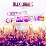 Pleasure Of Music #1 - Podcast [Electro House / Progressive House]