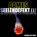 AAMES - SEELENDEFEKT III ( Classic Mix Vinyl Set 2011 )