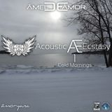 Acoustic Ecstasy 1 - Cold Mornings