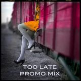 Too Late Promo Mix by Mr Roka