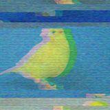 Canario Para Llevar_Techno Hertz & Claps [B-Side]