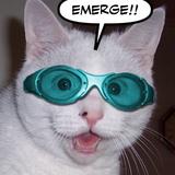 DJ WINTONE - Emerge Fest Mini Mix