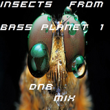 Frizbee's - Insects From Bass Planet 1 Mix (DnB)