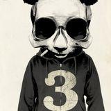 Never Say No To Panda # 5
