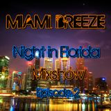 Miami Breeze - Night in Florida Mixshow Episode 2 (February 2012)