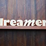 Dreamer- ElectroUnique (Promo mix 5/5)