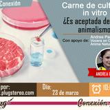 Tema: Carne in vitro o carne de cultivo