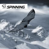 The Eagle - 90' Spinning® training