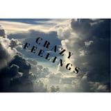 #2 Crazy Feelings