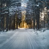 The Roads of Winter