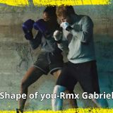 Remix Shape of you (Mashup Moombathon House & EDM) Gabriel