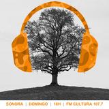 Sonora - 05/06/2016