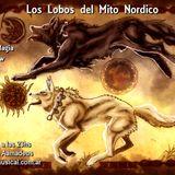 #892 Lobos Mito Nordico