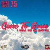 Dub Radio 175: Gone To Soon (A Special VYBZ DUB Legacy Mix (2019) (DJ R Dub L & StreetVybz)