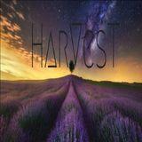 HARVEST BLISS & BEYOND 004