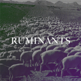 Ruminants mix (14/03/14)