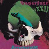 Superfuzz Reverberator # XXII