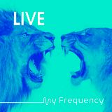 My Frequency LIVE! @ Mercury Lounge, Dubai (december 2017)