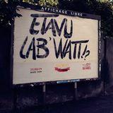 2 minutes sur le 1er jour du festival Lab'Watt à DMC