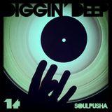 Diggin' Deep Vol. 14