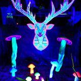 Abracasabra @The Dancing Deer 2018