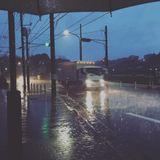 6月15日 午前7時 雨