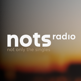 A small selection (mix) of the playlist from www.NOTSradio.nl (first edition)