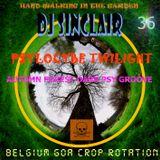 DJ SINCLAIR H36 groovy forest PSYLOCYBE TWILIGHT dark groovy psy