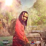 Paradise Volume 1 (Roots Reggae) #NerveDJs #RootsReggae