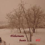 Hibernate beats