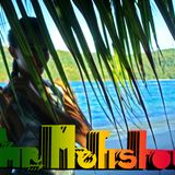 HeartBeat of an Irie Plannet by *mr. Mefistou*
