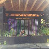 Chuck Bradshaw - Future Forest 2018 Mushroom Stage