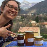 Kikeriki #16 Les abeilles