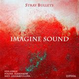Imagine Sound - Stray Bullets (Podcast 006)