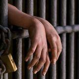 Proyecto de ley: Prisión preventiva: Luis Böhm - senador del FpV