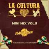 La Cultura - Mini Mix Vol. 5 (DJ Flashback)