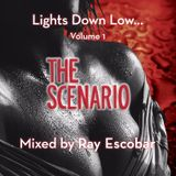 "THE SCENARIO ""Lights Down Low"" vol. 1"