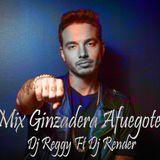 Mix Ginzadera Afuegote - DJ Render ft. DJ Reggy
