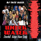 DJ TATZ BLESS - UNDER WATER DANCEHALL MIXTAPE VOLUME 20