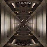 Toshie - (понедельник|подкаст 46)
