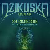 CJ Art ][ Artelized @ Dzikuska Open Air 2016 (Poland) - Main Stage [24.06.2016]