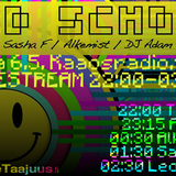 Old School Vol 1 06.05. - Sasha F