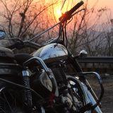 Trance Tales #029 - Pied Rider