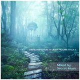Secret Music - Reincarnation: A Deep House Tale One